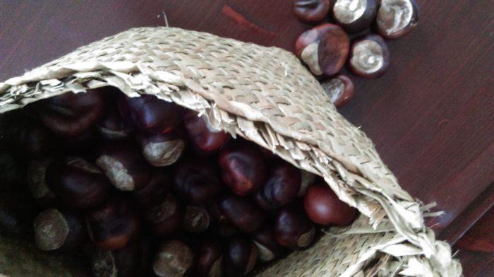 Kastanien enthalten waschaktive Substanzen, die sogenannten Saponine
