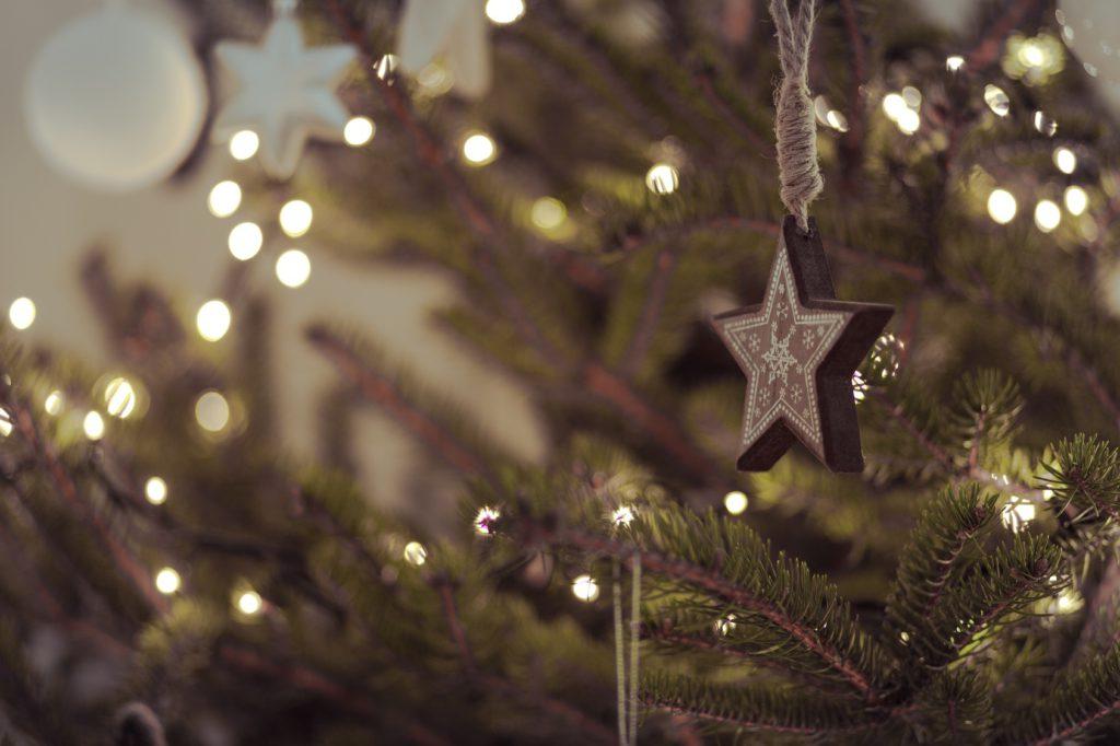 Weihnachtsbaum Kaufen Essen.Nachhaltige Weihnachten Weihnachtsbaum Und Weihnachtsgans
